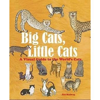 Big Cats Little Cats by Jim Medway