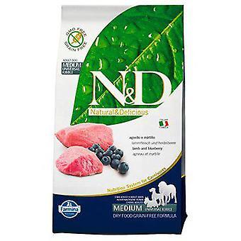 Farmina Lamb & Blueberry Adult Medium (Dogs , Dog Food , Dry Food)