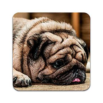 4 ST Dog Pug Coasters