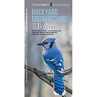 Backyard Birdwatching in Boston: An Introduction to Birding and Common Backyard� Birds of Eastern Massachusetts (All about Birds Pocket Guide)