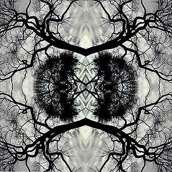 Adam Rudolph - Sonic Mandala Go: Oorganic Orchestra [CD] USA import