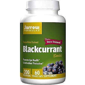 Jarrow Formulas Blackcurrant 200mg Vegicaps 60