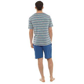 Ponožky a obnos mens Jersey bavlna krátký rukáv pruhovaná horní pyjama