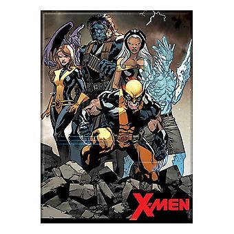 X-Men-Gruppe Magnet
