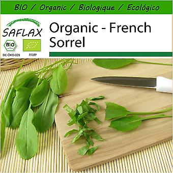 Saflax - 400 seeds - With soil - Organic - French Sorrel - BIO - Oseille commune - BIO - Acetosa - Ecológico - Alazana - Sauerampfer