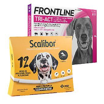 Frontline Tri Act suuri rotu + Scalibor