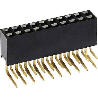 econ connect Receptacles (standaard) Nr. rijen: 2 pinnen per rij: 14 BLW2X14 1 pc(s)