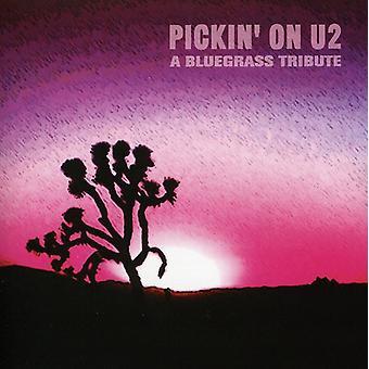 Pickin' on U2 - Pickin' on U2 [CD] USA import