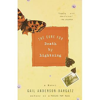The Cure for Death by Lightning by Gail Anderson Dargatz