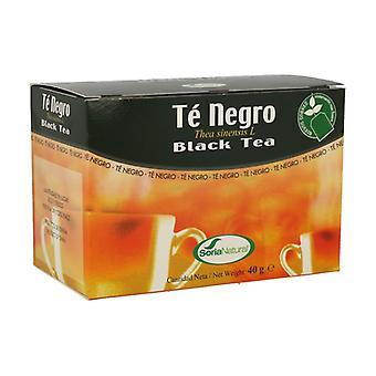 Black Tea Infusions 20 infuusiopussia