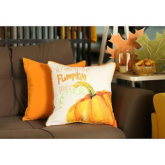 Pillowcases shams throw pillow cover sm149264