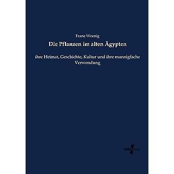 Die Pflanzen im alten gyptenihre Heimat Geschichte Kultur und ihre mannigfache Verwendung by Woenig & Franz