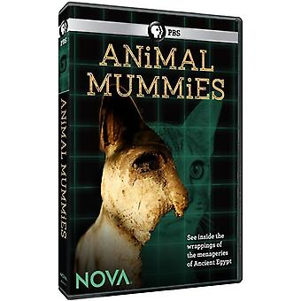 Nova: Animal Mumier [DVD] USA import