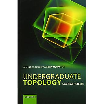 Undergraduate Topology: A Working Textbook