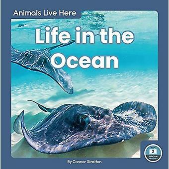 Djur lever här livet i havet av Connor Stratton