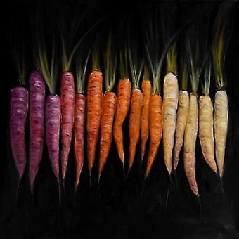 Different Coloured Carrots Vegetable Poster Print by Atelier B Art Studio