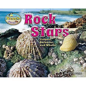 Des Stars du rock: Patelles, balanes et bulots