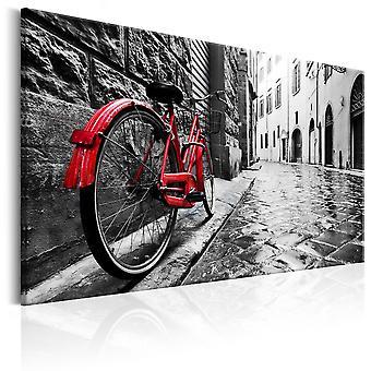 Quadro - Vintage Red Bike