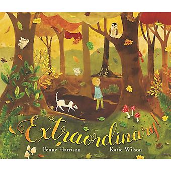 Extraordinary by Penny Harrison & Illustrated by Katie Wilson