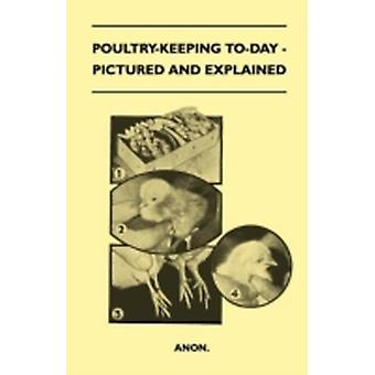 PoultryKeeping ToDay  Pictured And Explained by anon.