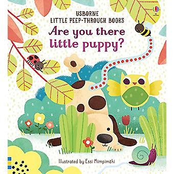 Você está aí, cachorrinho? por Sam Taplin - 9781474966870 Livro