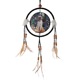 Decorative Lisa Parker Hocus Pocus 16cm Dreamcatcher X 1 Pack