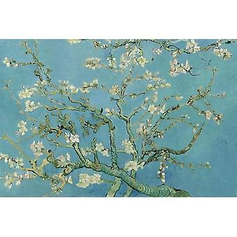 SuperPower Quiet Art 1000 Piece Blooming Apricot Flowers