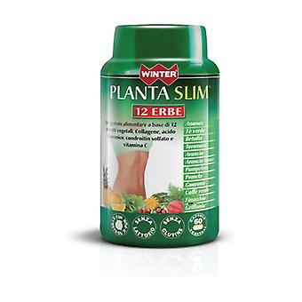 Slim plant 12 herbs 60 tablets