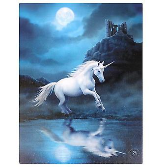 Anne Stokes Moonlight Unicorn Canvas