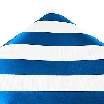 Krawatten Planet Gold Label Blau & Weiß Gestreifte Seide Pocket Square Taschentuch