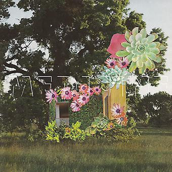 Medicine - Home Everywhere [CD] USA import