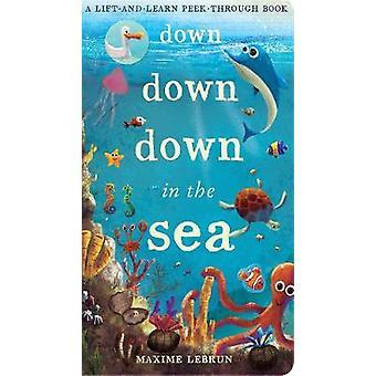 Ner ner ner i havet - en hiss-och-lär peek-through-bok av Maxi