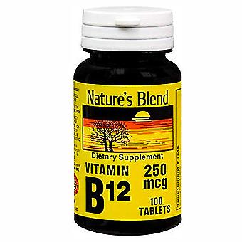 Nature's blend vitamin b12, 250 mcg, tablets, 100 ea