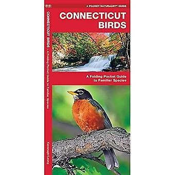 Connecticut Birds (Pocket Naturalist)
