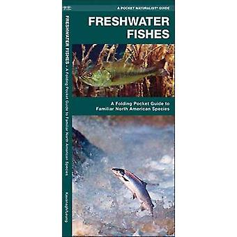 Freshwater Fishes - A Folding Pocket Guide to Familiar North American
