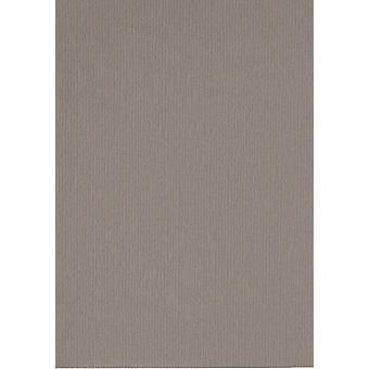 Papicolor 6X Cardboard 210X297mm-A4 Mouse-Grey