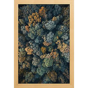 JUNIQE Print - Toscana - Forests Poster in Bruin