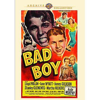 Bad Boy [DVD] USA importerer
