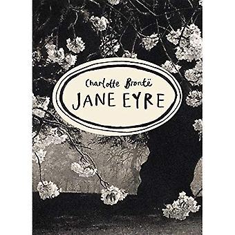 Jane Eyre (Vintage klassiekers Bronte serie)
