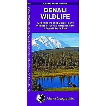 Wildlife of Denali National Park (Pocket Traveller)