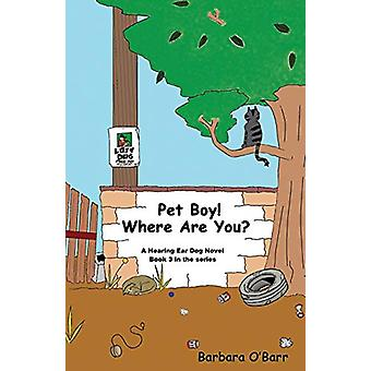 Pet Boy! Where Are You? by Barbara O'Barr - 9781627873895 Book