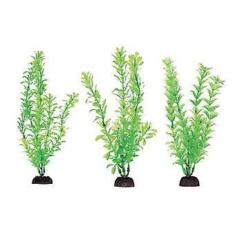 """Penn Plax Plast växtpaket 8"""" Grön - 6 räkning"""