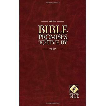Promesas de la Biblia para vivir