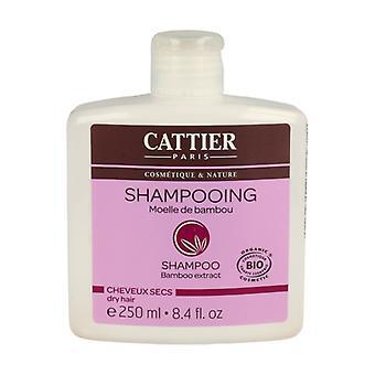 Dry Hair Shampoo (Bamboo Marrow) 250 ml of gel