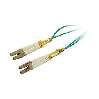 Pro2 1M fiber patch bly