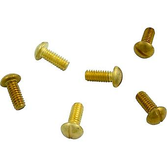 Hayward SPX0503Z76 Securing Underwater Light Screw - 6 Pack
