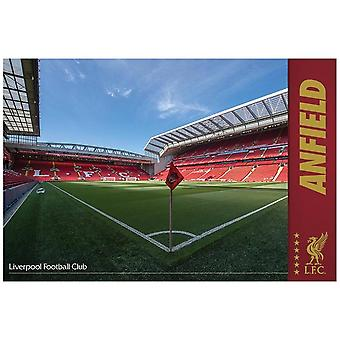 Liverpool FC, Maxi Poster - Anfield