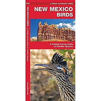 New Mexico Birds: An Introduction to Familiar Species (Pocket Naturalist Guides)