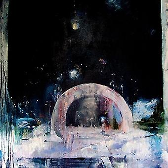 Daughter - Not to Disappear [Vinyl] USA import