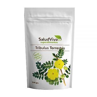Salud Viva Eco Tribulus Terrestris  250 gr